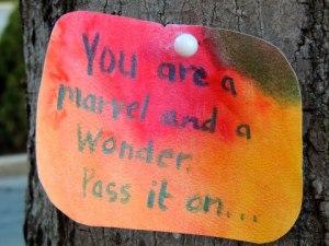 Marvel and Wonder