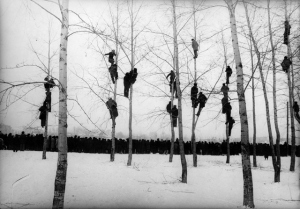 mikola_gnisuk_people_in_trees